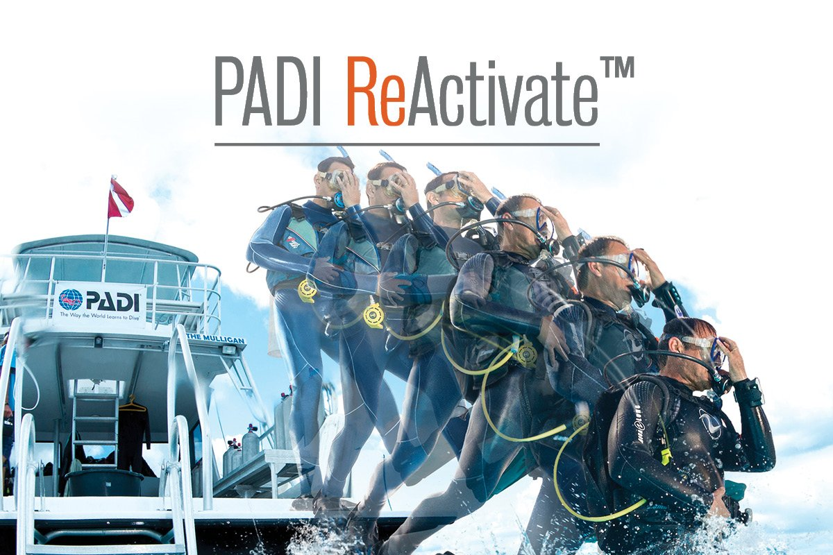 ReActivate-OnlineBanners_EN_rev11.172